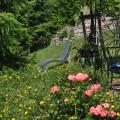 Ferienwohnungen Haus Bachmatt Himmelsliege und Pavillon im Garten